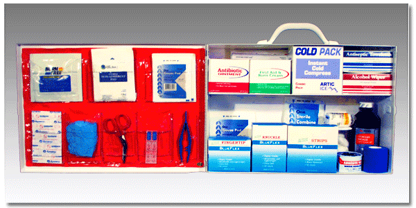 "FoodSafeâ""¢ First Aid Cabinet 200"